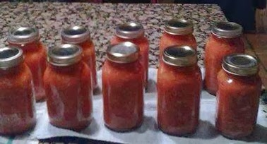 Renee's Stewed Tomatoes