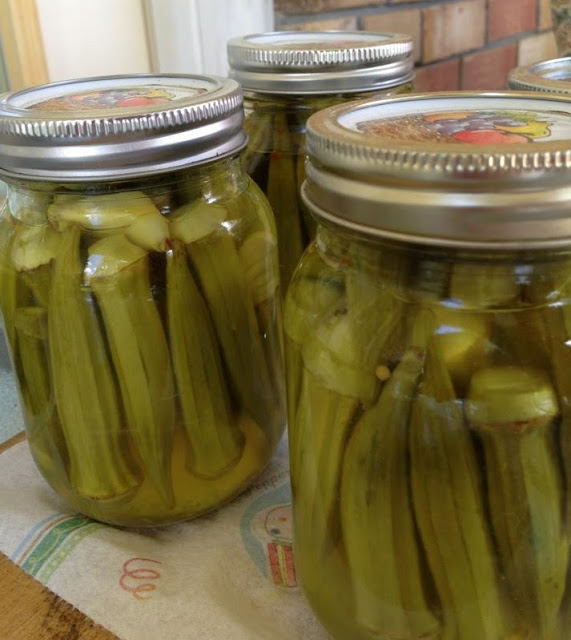 Canning pickled Okra… Ball Blue Book has it perfect!