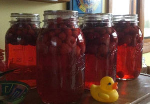Cran-Raspberry Juice – The easy way!