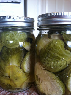 Pickling Vegetables – Carrots, Brussel Sprouts, and Asparagus