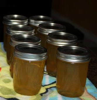 Better Homes & Gardens, Can It! – Lemon Honey Jelly