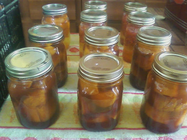 Pressure Canning Candied Yams
