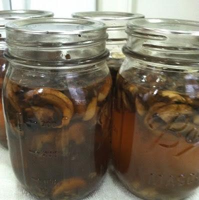 Canning Soups – Mushroom Soup
