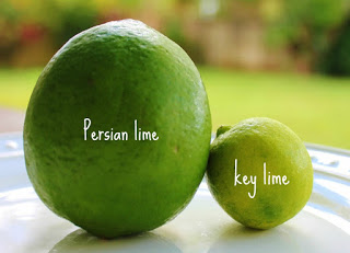 Blueberry Key Lime Jam – Not all limes are created equal!
