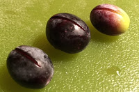 Curing Olives – Process 1 – Dry Curing Olives