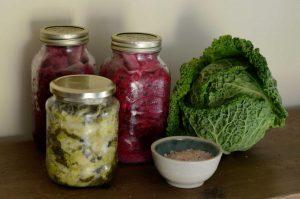 Erin's Jars of Sauerkraut