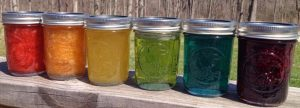 A rainbow of recipes for Jams and Jellies