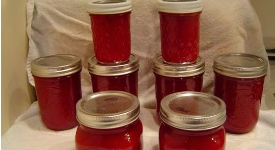 Cranberry Sauce –Jellied