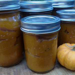 Faux Pumpkin Butter