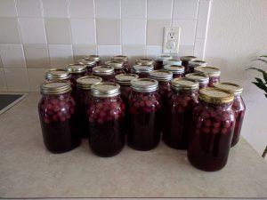 Grape Juice in a Jar