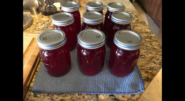 Homemade Canned Cranberry Juice