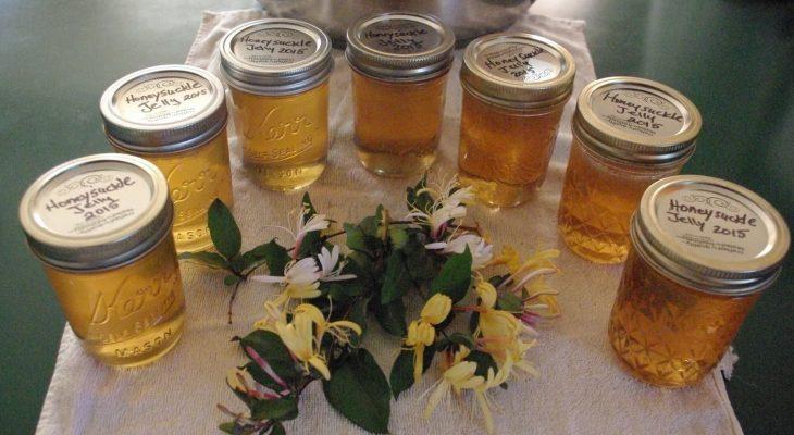 Honey suckle Jelly