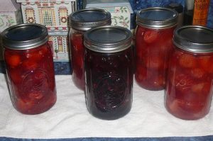 Kelly's Strawberry Pie Filling and One quart of Blueberry Pie filling