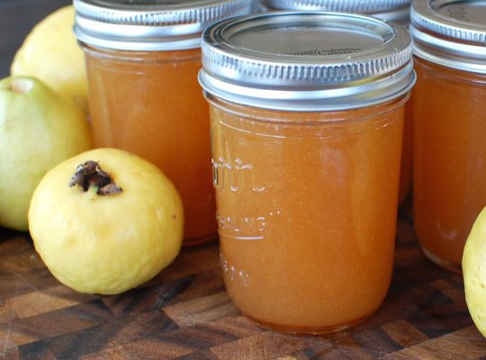 Guava Jam – A new variety – at least to me!