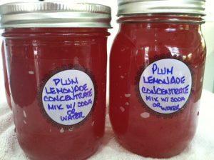 Plum Lemonade Concentrate