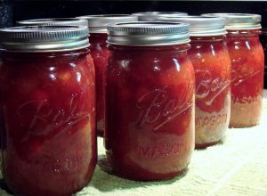 Sherrie's Cranberry BBQ Sauce