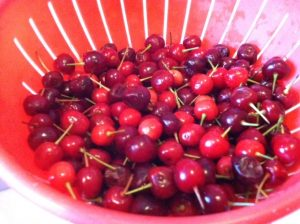 Sour Cherries and the tiny stems