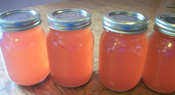 Sunshine Rhubarb Juice Concentrate