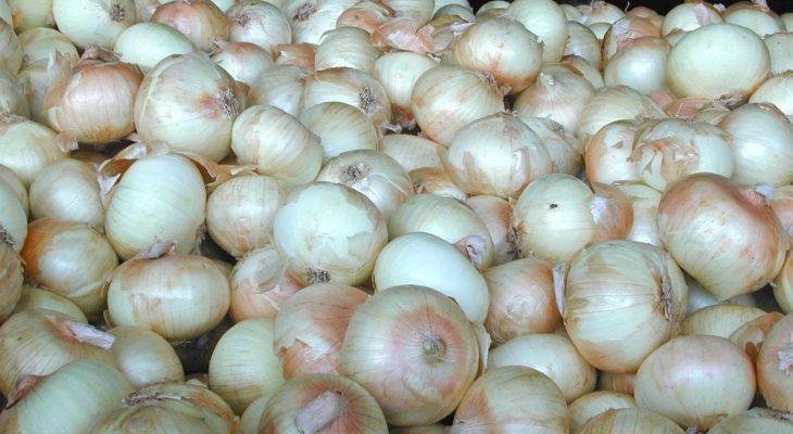 Sweet Pickled Vidalia Onion