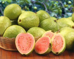 unripe Mexican Guava