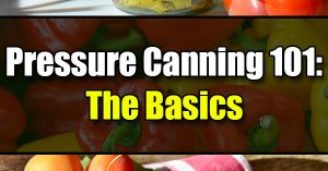 Canning Basics: When to use a Pressure Canner or Boiling Water Bath