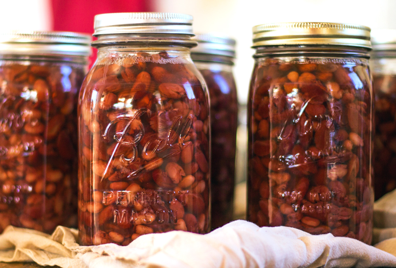 The Fresher the Beans the Better When Canning Beans