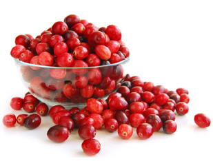 Cranberry – An experiment in canning